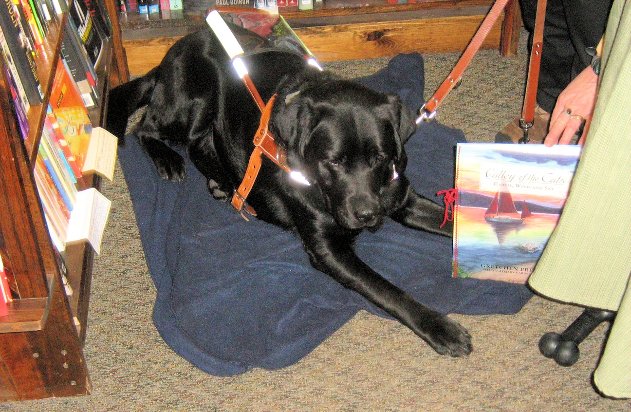 Floyd, Gretchen Preston's Service Dog, with Valley Cats