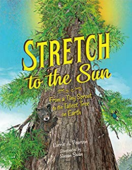 Stretch to the Sun: From a Tiny Sprout to the Tallest Tree on Earth Image