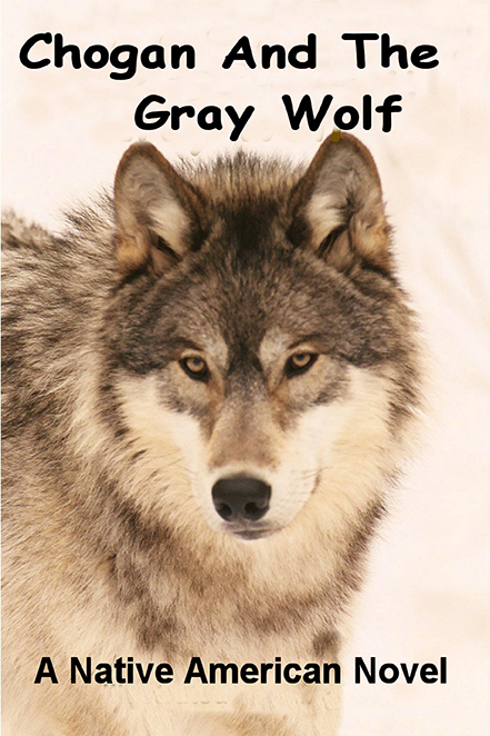 Chogan and the Gray Wolf Image
